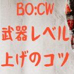 COD:BOCW 武器レベル 上げ コツ ポイント